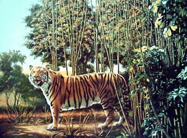 ukryty tygrys